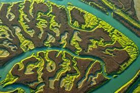 Une des vues magnifiques du Parque nacional de Donana